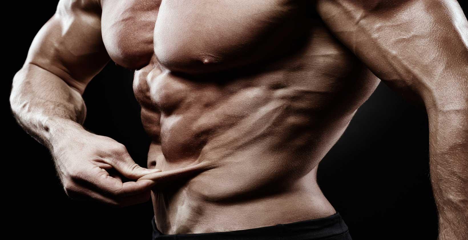 muskler bränner fett